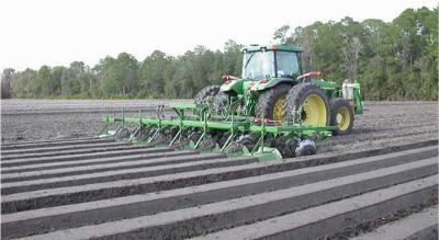 methyl jasmonate application in soil